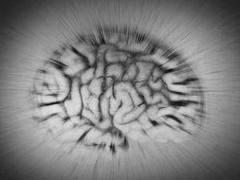Brain hive mind