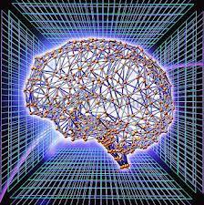 brain nsa